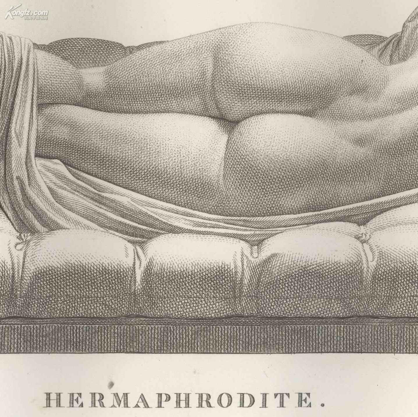 1811年 精美铜版画 hermaphrodite 古希腊雌雄同体雕塑 拍品编号图片