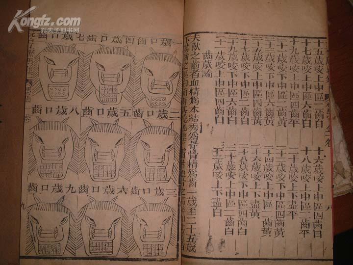 [线装古旧书拍卖品]《元亨疗马集》附牛经驼经,大量木刻插图,一函八册全,