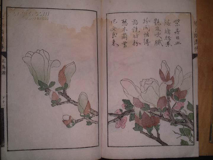 [线装古旧书拍卖品]五色套印木刻大部套《芥子园画传1-4集》23册全
