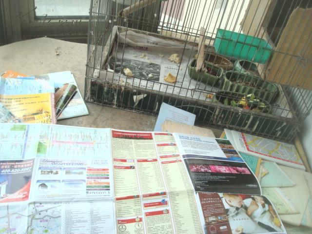 图片 老旅游地图 2012上海 欢乐谷巴西女 解 高清图片