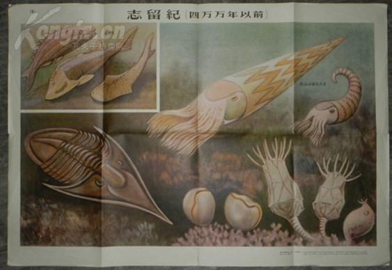 【图】(12)五十年代教学挂图:志留纪(四万万年