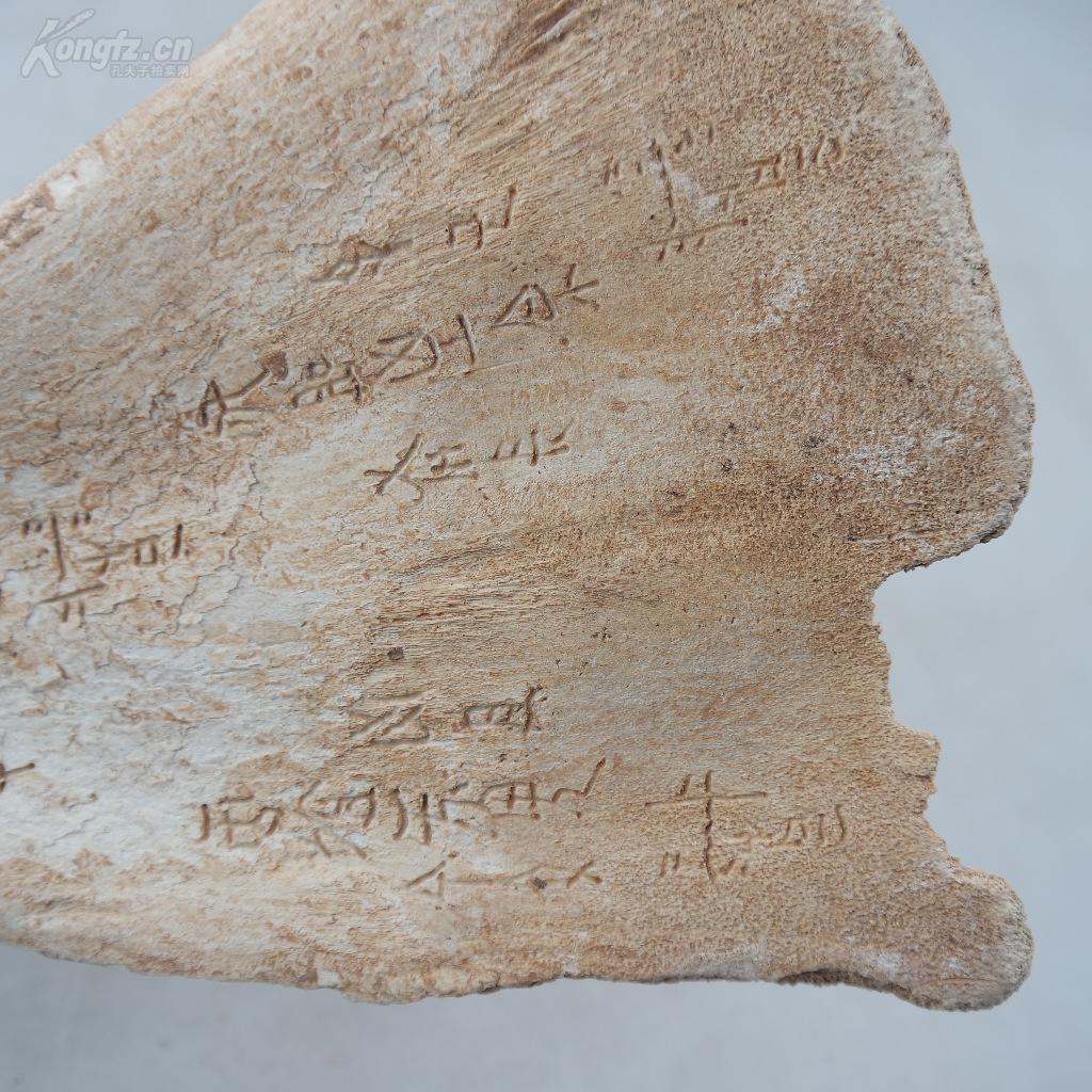 早期描写--远古龙骨《殷墟作文文》文明少见物美食收藏珍品的黄山600字图片