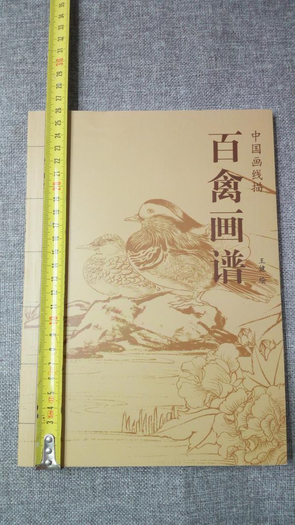 百禽画谱  16开本。杨柳青出版皆为图画,精美漂亮中国画线描系列5